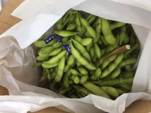 2018.7.9枝豆